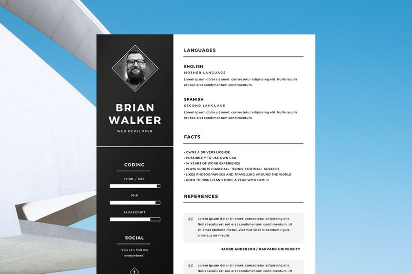 Resume Example Templates